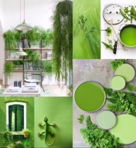 colour trend for this season higheight home living - Season Pictures To Colour