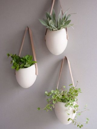 Styling With Plants In Your Home Higheight Home Living